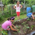 Gartenprojekt02