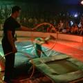 zirkus_vorstellung-61